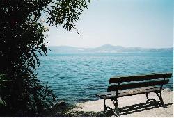 Photo n°: 2